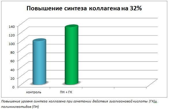 Повышение синтеза коллагена на 32%