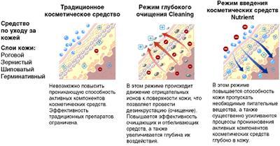 SPA by Natura Siberica: по-настоящему органические процедуры теперь в Москве!